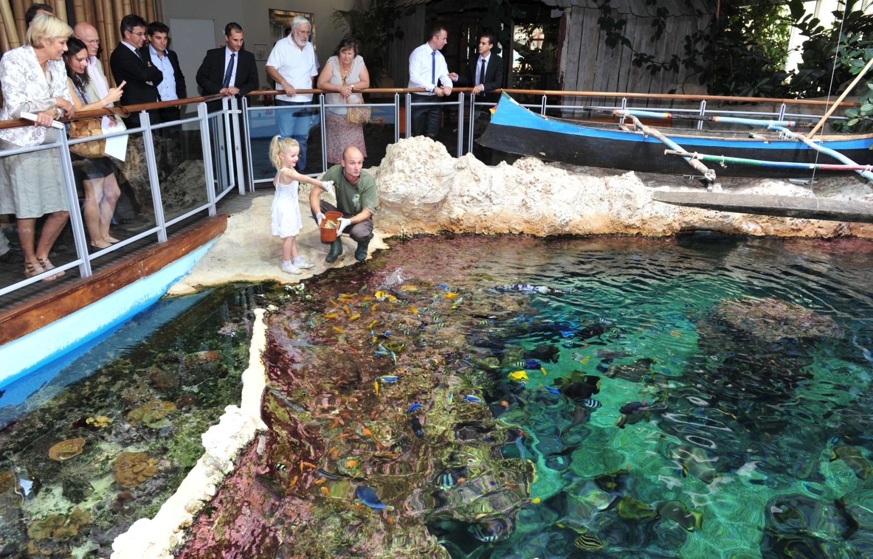 l aquarium mare nostrum de montpellier agglom 233 ration f 234 te 2 millioni 232 me visiteur